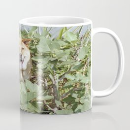 Playing in a fig tree Coffee Mug