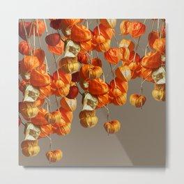 Dry hanging flowers Metal Print
