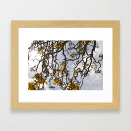 Yelow Framed Art Print