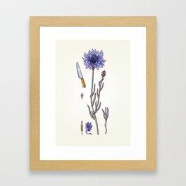 blue cornflower and knife Framed Art Print