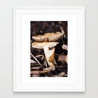 mushroom Framed Art Prints featuring Mushroom by Alane Gianetti