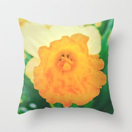 Close up Narcissus 7 Throw Pillow