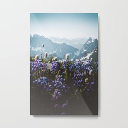 Mountain Meadows Metal Print