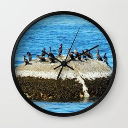 Cormorants Basking on The Big Rock Wall Clock