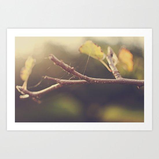 Apple Tree in the Fall Art Print