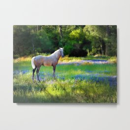 Lupine Delight Metal Print