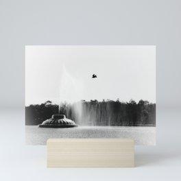 Over The Lake Mini Art Print