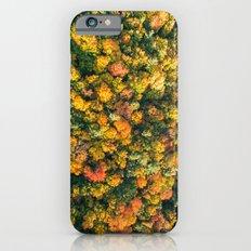 Autumn Trees Slim Case iPhone 6s