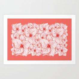 coral flower Art Print