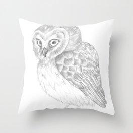 Young Saw Whet Owl Throw Pillow