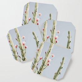Cereus Cactus Blush Coaster