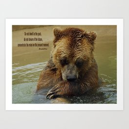 In Deep Thought   - Grizzly Bear Art Print