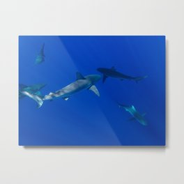 Hawaiian Shark V Metal Print