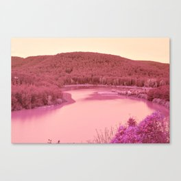 Nature went swimming VII Canvas Print