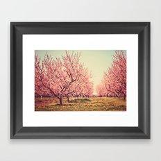 Springtime Dream Framed Art Print