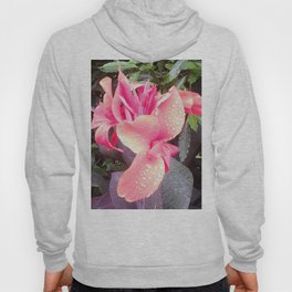 Pink Canna Lily and Raindrops Hoody