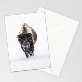 Yellowstone National Park: Lone Bull Bison Stationery Cards