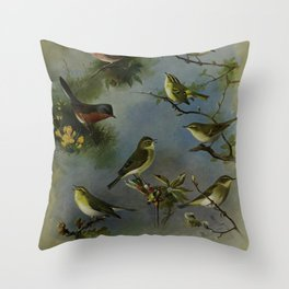 Vintage Print - Warblers & Wrens, from Thorburn's British Birds (1915) Throw Pillow