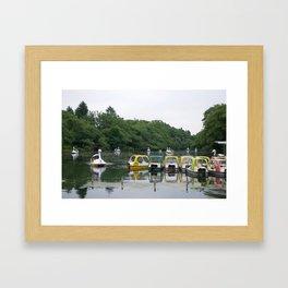 Swans in the Park Framed Art Print