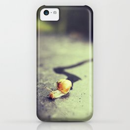 Snail on its way iPhone Case