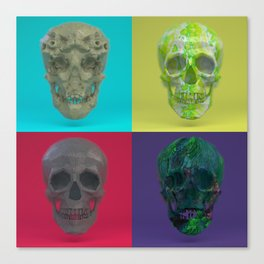 Skull Collection 03 Canvas Print