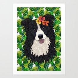 Tropical Border Collie Art Print