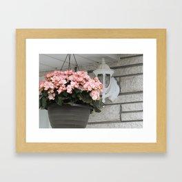 Hanging Planter Framed Art Print