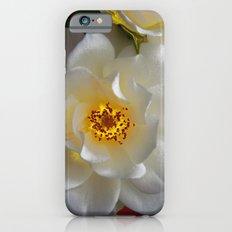 Icebergs Bliss iPhone 6s Slim Case