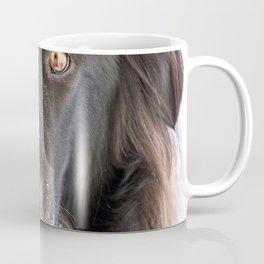 Gaze into my eyes Coffee Mug