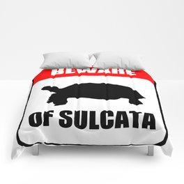 Beware of Sulcata Comforters