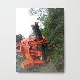 Tst Metal Print