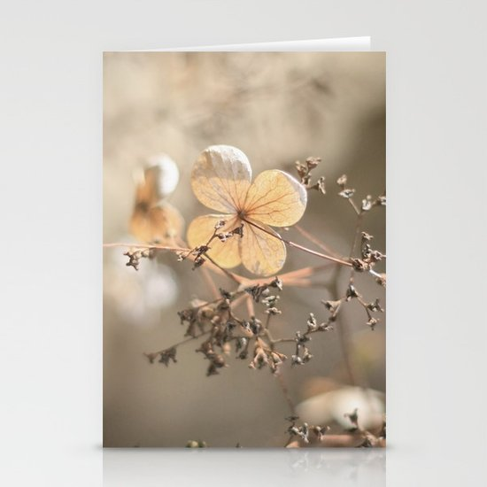 still beautiful °3 Stationery Cards