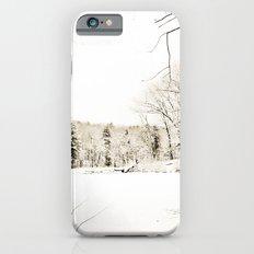 On Thin Ice iPhone 6s Slim Case