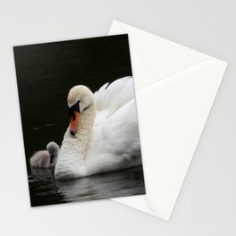 Mute Swan with Cygnet Stationery Cards