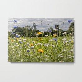English Wildflower Meadow Metal Print