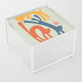 Cats Acrylic Box