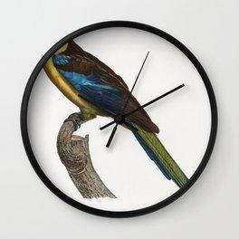 The Crimson Rosella Platycercus elegans from Natural History of Parrots (1801-1805) by Francois Leva Wall Clock