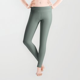 Allaying Grey Blue Green Solid Color Pairs To Sherwin Williams Halcyon Green SW 6213 Leggings