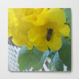 Pollenation Metal Print