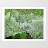Dew-Soaked Webs Art Print