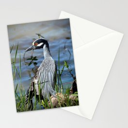 Heron with a broken wing Stationery Cards
