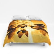 Primula  Comforters