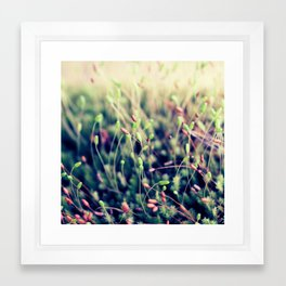 The Little Things Framed Art Print