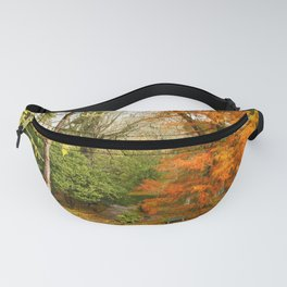 Willow in Autumn colors Fanny Pack