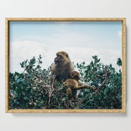 Macaque Mother and Daughter Serving Tray