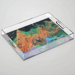 RADRCAST Acrylic Tray