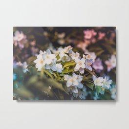 White Blooms Metal Print