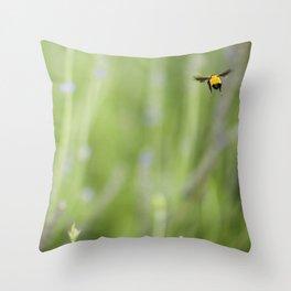 Imposible flight Throw Pillow