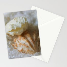 Seashells 1 Stationery Cards
