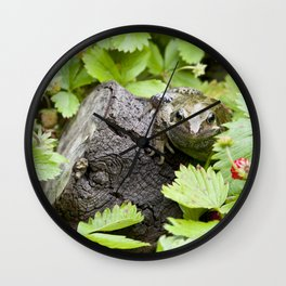 Toad with strawberries Wall Clock